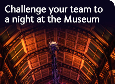 Team challenges at the Museum