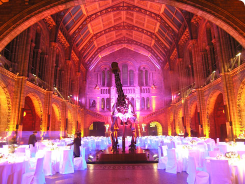 Hintze Hall lit up for a wedding