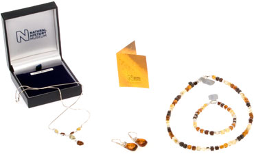 Goldmajor use some of the highest quality amber in Europe for our range of beautiful jewellery.