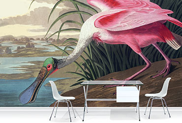 Surface view create bespoke murals, dramatic prints and exclusive blinds