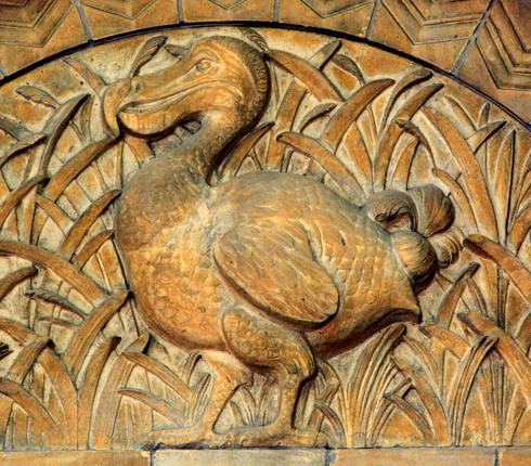 Detail of a terracotta moulding of a dodo in the Waterhouse Building at the Natural History Museum