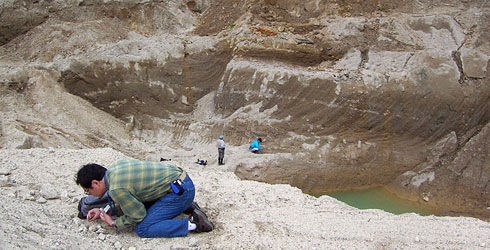 Small quarry at Kuromatsunai exposing one million-year-old gravels containing abundant fossil specim