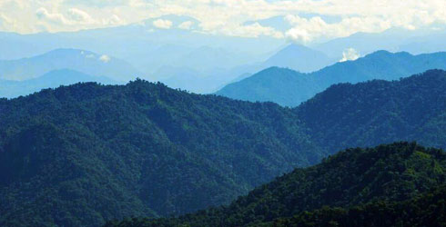 The tropical Andes, a threatened habitat