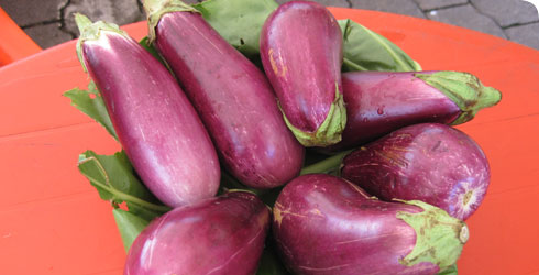 Solanum melongena, also known as eggplant or aubergine