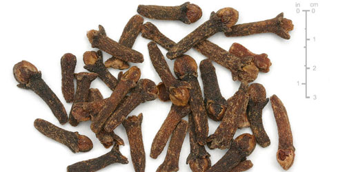 Dried clove buds