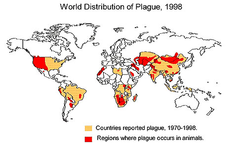 World distribution of plague, 1998.