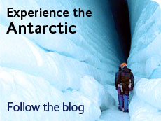Experience the Antarctic - follow the blog