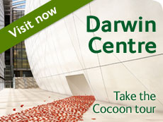 Opening of the Darwin centre