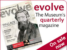 Evolve issue 15 - out now