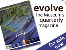Evolve issue 20 - out now