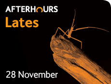 Lates events November 2014