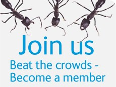Join us: Become a member - beat the crowds.