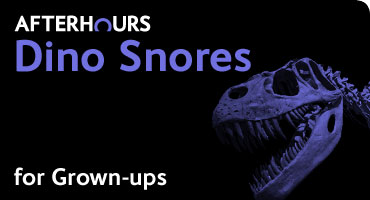 Dino Snores for Grown-ups