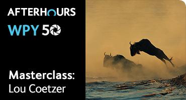 Masterclass: Understanding Behaviour Photography with Lou Coetzer