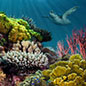 Coral Reefs and Climate Change: Looking Back to Plan Ahead