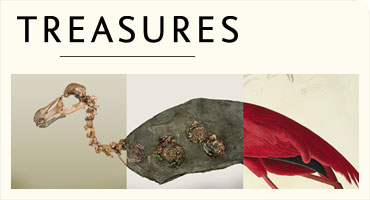 Treasures in the Cadogan Gallery