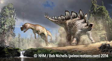 Super Stegosaurus Workshop