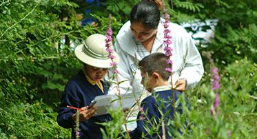 Wildlife Garden Explorers