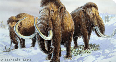 Mammoths: Ice Age Giants - Members' private view