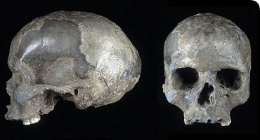 Piecing it together: Ancient human discoveries