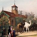 Architecture and History of London Zoo