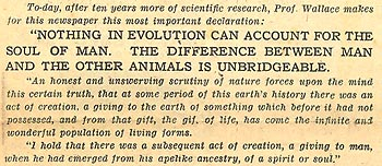 'Evolution can't explain the soul' press cutting (extract)