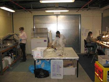 Conservation lab © Antarctic Heritage Trust
