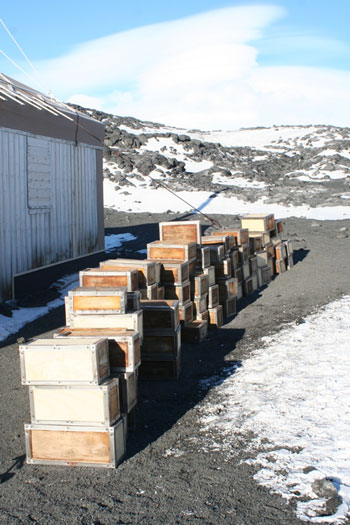 Conserved Venesta cases - just some of the 203 boxes the team moved © Antarctic Heritage  Trust