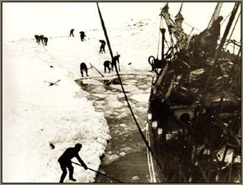 Crew of the Endurance chopping through pack ice © Antarctic Heritage  Trust