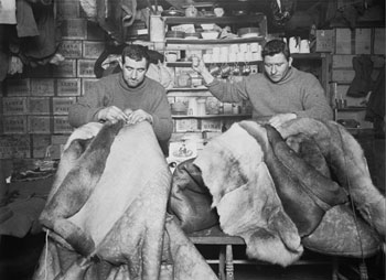 Petty Officer Evans and Crean mending sleeping bags at Cape Evans in May 1911 © Scott Polar Research Institute