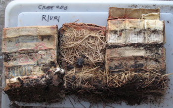 The boxes of soap in the condition they were in at Cape Royds © Antarctic Heritage  Trust