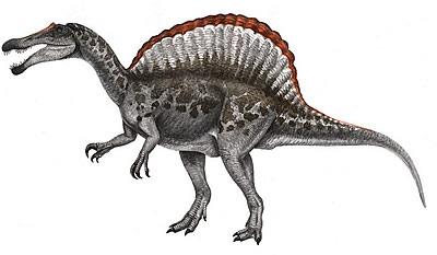 Питон - одна из самых крупных плотоядных рептилий на планете.