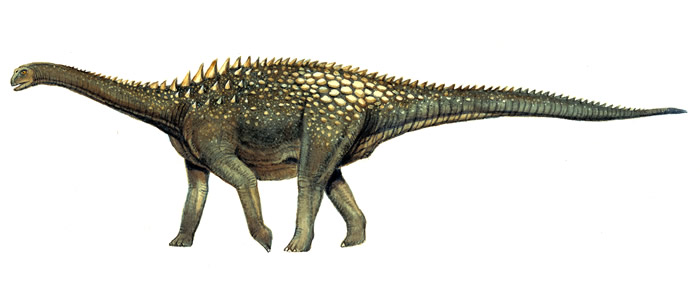 How Ampelosaurus may have looked - Anness Publishing / NHMPL