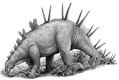 http://www.nhm.ac.uk/resources/nature-online/life/dinosaurs/dino-directory/drawing/Chialingosaurus.jpg