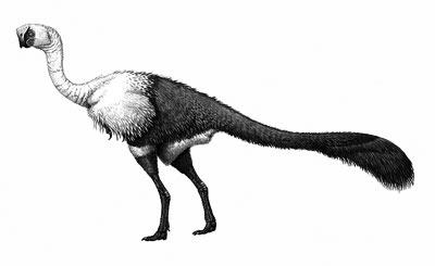Imagenes de Dinosaurios con la letra C