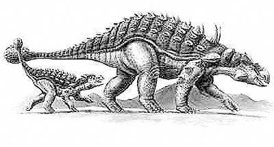 How Ankylosaurus may have looked.
