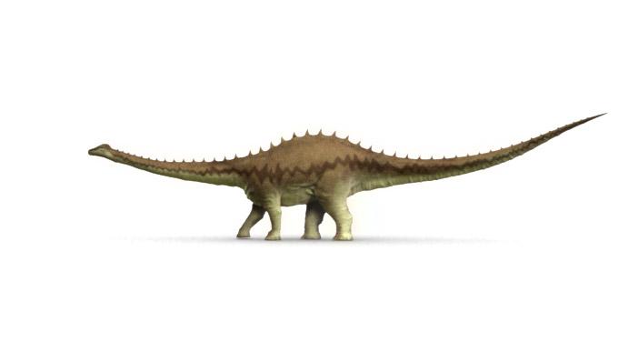 Paleontological studies of south carolina - Dinosaure diplodocus ...