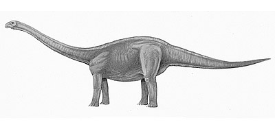 An artist's impression of Amygdalodon