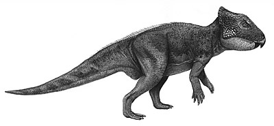 An artist's impression of Archaeoceratops