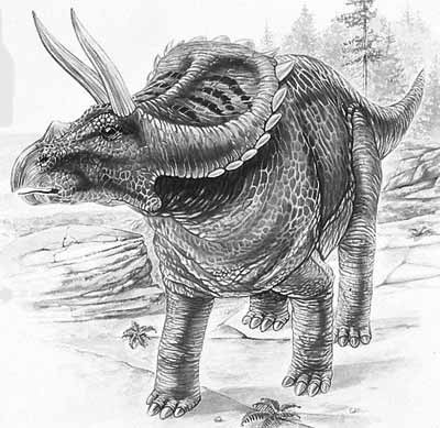 An artist's impression of Arrhinoceratops