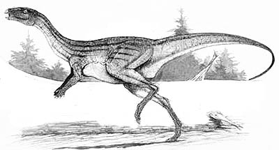 An artist's impression of Atlascopcosaurus