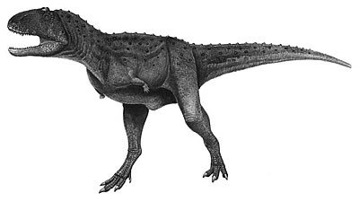 An artist's impression of Aucasaurus