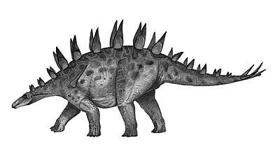 An artist's impression of Chungkingosaurus