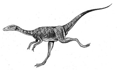 An artist's impression of Compsognathus