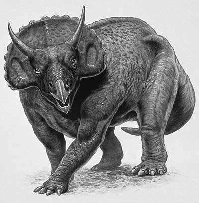 An artist's impression of Nedoceratops