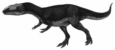 An artist's impression of Dubreuillosaurus