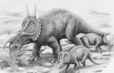 An artist's impression of Einiosaurus
