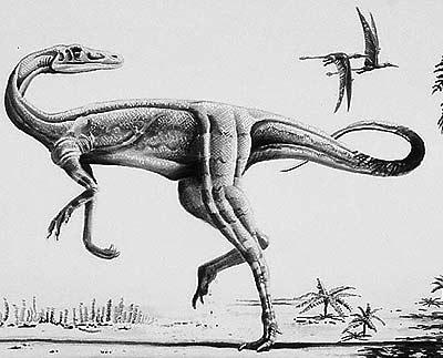 An artist's impression of Elaphrosaurus