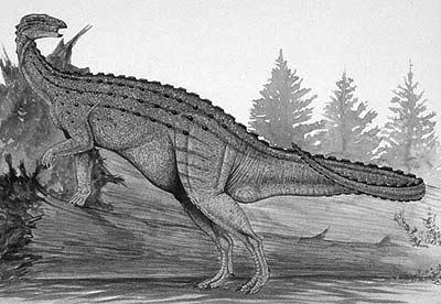 An artist's impression of Emausaurus