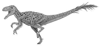 An artist's impression of Eotyrannus